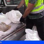 Descubren en Madrid más de 100 kilos de Cristal, entre escombros, en una furgoneta