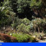 La Consejería destinará 300.000 euros al Jardín Botánico de Tenerife