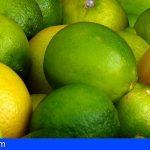 Invesitigado por sustraer 20 kg de limones en una vivienda de Tacoronte