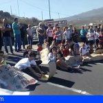Familias y alumnado del IES Arico reclamaron el acceso al instituto, Quesería Majuca y la Cooperativa
