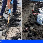 36 toneladas de piche han sido extraídas de la costa protegida del Malpaís de Güímar