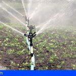 Canarias destina 13,2 millones para infraestructuras agrícolas y de regadío