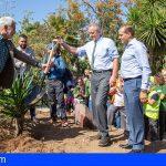 Adeje inicia junto a Robert F. Kennedy y Juan Verde, la siembra del Bosque Productivo
