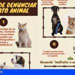 Guía online para saber cómo denunciar los delitos de maltrato animal
