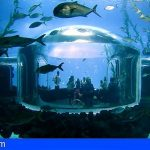 El acuario Poema del Mar en Gran Canaria cumple dos años