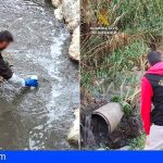 En Tenerife varias personas han sido investigadas por envío ilegal de residuos peligrosos a África