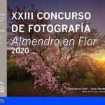 Santiago del Teide | Abierto el Plazo del Concurso de Fotografía Almendro en Flor 2020