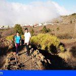 Stgo. del Teide recupera el esplendor del almendro en flor con labores de poda y fumigación