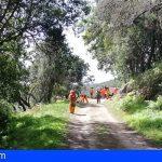 La Gomera destina 3 millones a la protección y mejora del medioambiente