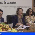 86.207 escolares canarios se beneficiarán del plan sobre consumo de frutas y verduras