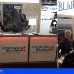 Canarias presente en la feria de turismo de Gante para ganar cuota en el mercado belga