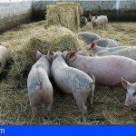 Miles de ganaderos españoles afrontan la ruina por el cerrojazo de la hostelería