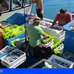 Canarias destina 5,6 millones en ayudas directas para la pesca y la acuicultura