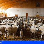 """UPA sobre el precio de los alimentos: """"Los especuladores serán perseguidos"""""""