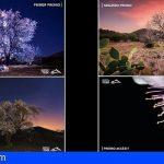 Santiago del Teide | Francisco Javier García, ganador del Concurso de Fotografía Almendro en Flor 2020