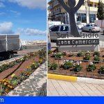 Granadilla embellece sus zonas verdes con más de 1.600 flores de temporada