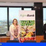 Canarias   Agricultura y CaixaBank impulsan microcréditos de hasta 50.000€ para el sector