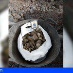 Inspección Pesquera realiza más de 180 controles desde la autorización de la pesca recreativa