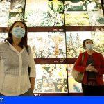 Tenerife reabre varios de sus museos con nuevo horario y protocolo de seguridad