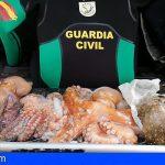El GEAS entrega a beneficiencia, en San Miguel, 8 kilos de pulpo procedentes de pesca en zona prohibida