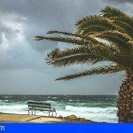 Alerta por Vientos | El Cabildo de Tenerife activó el Plan Insular de Emergencias de forma preventiva