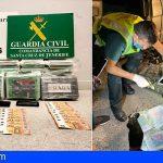 Lo pillan en el control de pasajeros del Puerto de Santa Cruz con 37 kilos de cocaína