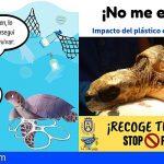 Tenerife   La Tahonilla ha atendido en seis meses a 14 tortugas marinas víctimas del plástico