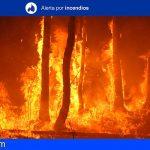 Gran Canaria en alerta por riesgo de incendios forestales