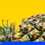 Canarias destinará 750.000€ para compensar las pérdidas de los productores de piña tropical