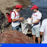 Granadilla | Cruz Roja y el Proyecto Libera luchan para erradicar la «basuraleza» en El Médano