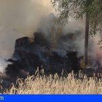 Granadilla acoge una charla informativa de prevención de incendios forestales para el personal de seguridad