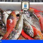 La Consejería trabaja en un protocolo para luchar contra la pesca furtiva