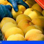 UPA denuncia a centrales hortofrutícolas por abusar de los agricultores