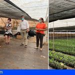 Javier Parrilla visita el centro base de Cultesa en Guía de Isora