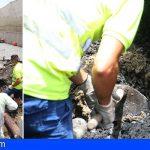 Reparada la avería en la red de saneamiento que une Alcalá y Playa San Juan