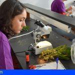 Sumérgete en la ciencia y la tecnología de Canarias