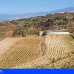 Canarias desarrolla varias líneas de investigación para regenerar los suelos