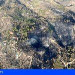 Se declara estabilizado el incendio en Tijarafe, La Palma