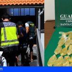 Desarticulan una organización criminal en Tenerife y La Palma, que introducían cocaína líquida desde Bolivia