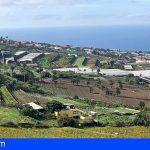 Canarias prevé paliar la escasez de superficie cultivable con las Directrices de Ordenación del Suelo Agrario
