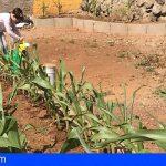 Tenerife oferta 23 proyectos educativos para alumnado de Infantil a Secundaria