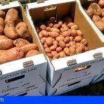 El Gobierno de Canarias convoca ayudas de 3,4 millones para los productores de papa de mesa