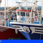 Canarias destina 1,7 millones a proyectos de actividad pesquera que fomentan la creación de empleo