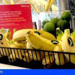 Miles de plátanos de Canarias vuelan, cada mes, en los destinos internacionales de Iberia