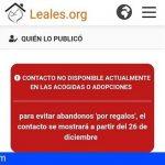 La plataforma Leales.org protege las adopciones de animales contra los regalos navideños