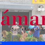 """La """"incapacidad"""" del Estado llevará a Canarias a unos niveles de desempleo insostenibles"""