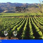 San Miguel | Bodegas Altos de Trevejos, Premio Tenerife Rural