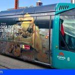Tranvía de Tenerife modifica su horario de fin de año para adaptarlo a las nuevas restricciones