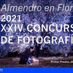Stgo. del Teide presenta el Concurso de Fotografía Almendro en Flor 2021