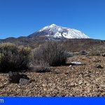 El Parque Nacional del Teide registra un enero inusualmente lluvioso y frío